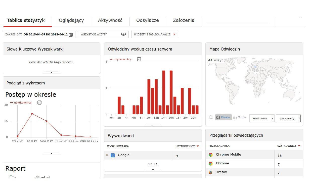 Statystyki odwiedzajacych stronę www